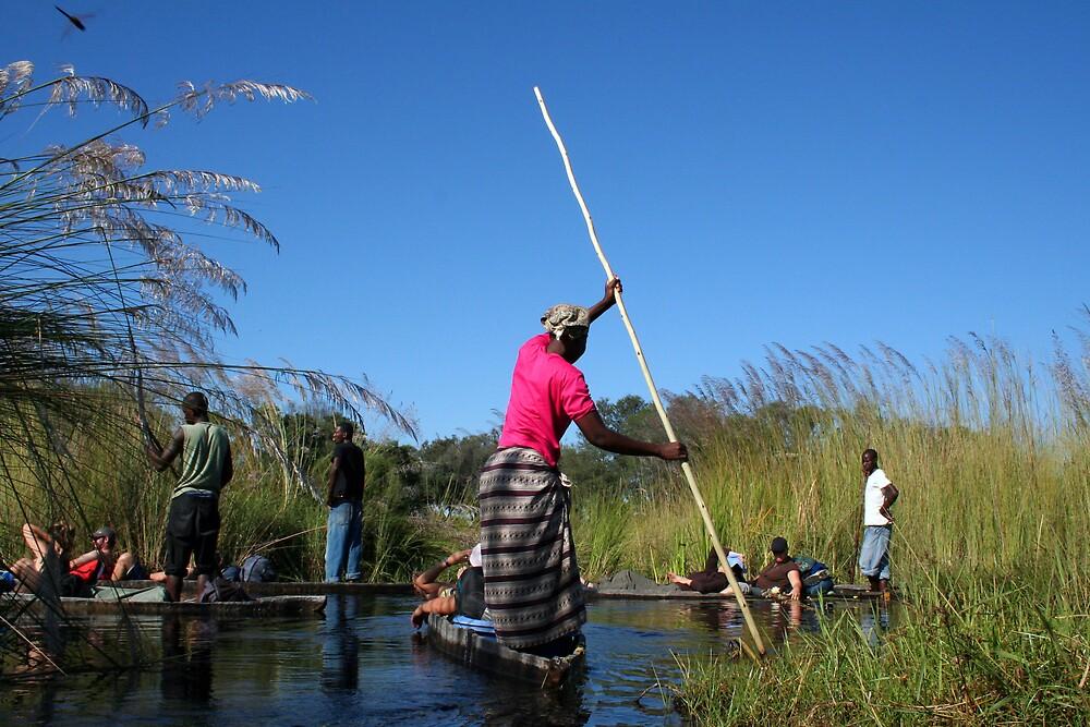 okavango delta by samantha jefferson