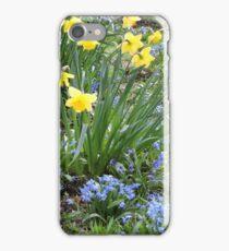 Daffodils 260317v2 iPhone Case/Skin