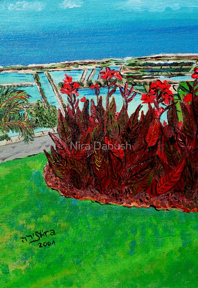Red Canna in Contrasts with Turquoise  Sky by Nira Dabush