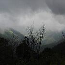 Misty Mountain by ShootingSardar