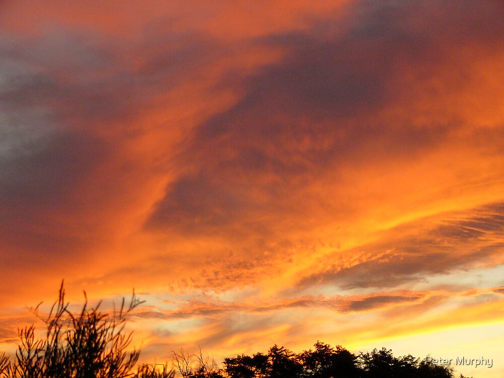 Red Sky over Port Augusta  South Australia by Peter Murphy