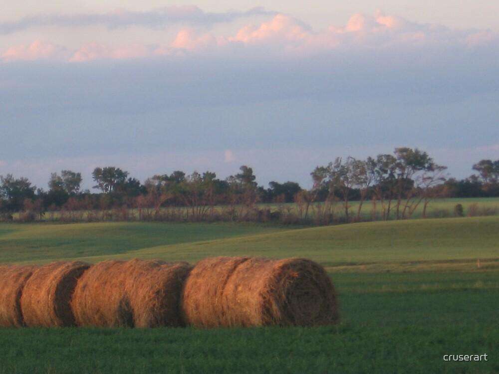 Hay Rolls at dusk by cruserart