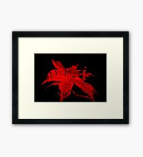 Red wine nature Framed Print