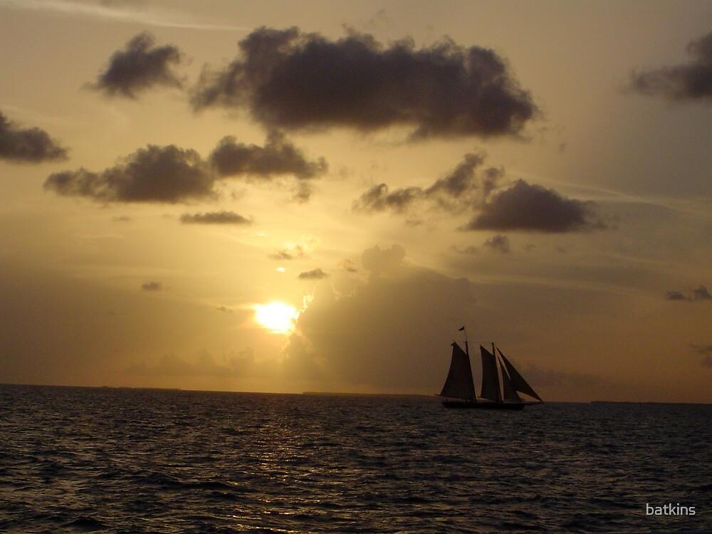 Clipper Ship by batkins