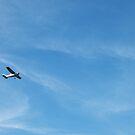 Blue Sky by batkins