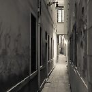 The Alley  by DCarlier