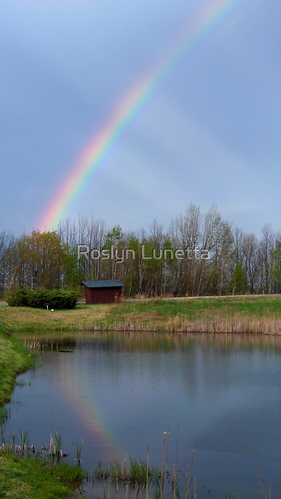 rainbows not reflections by Roslyn Lunetta