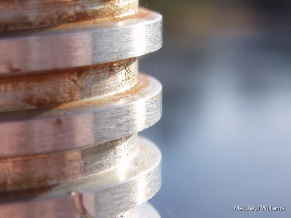 Spirals by Matthew Williams