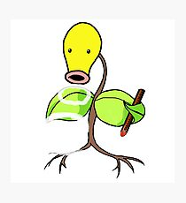 O BLOWIN BELLSPROUT Photographic Print