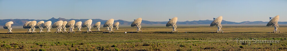 VLA by Terry Shumaker