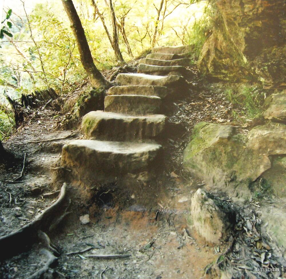 handhewn stairs by umauma