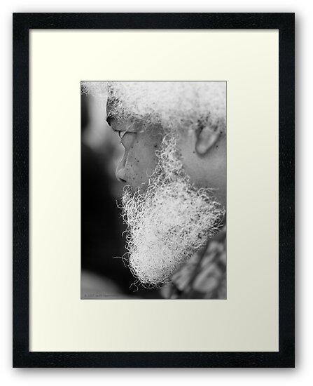 Jazz Man by Judith Oppenheimer