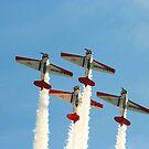 Aeroshell Team #1 by Paul Lenharr II
