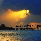 San Juan Sunset by Paul Lenharr II