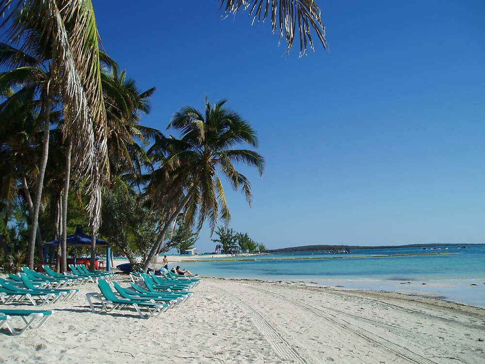 The Beach at Coco Cay - Bahamas by Deborah Stewart