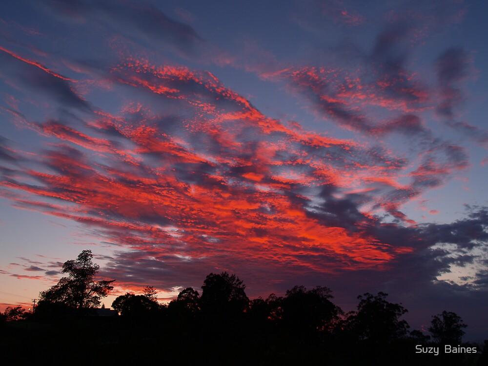 Fiery Sky by Suzy  Baines