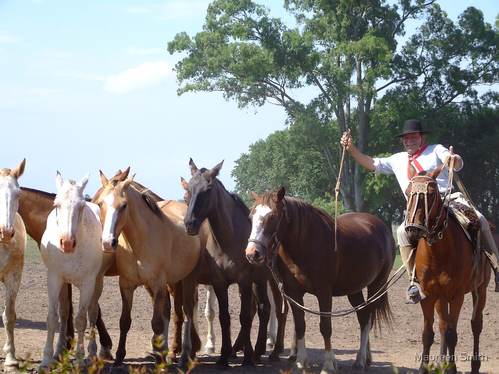 Argentina....Gaucho with his horses by Maureen Smith