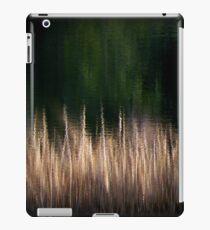 Ripple iPad Case/Skin