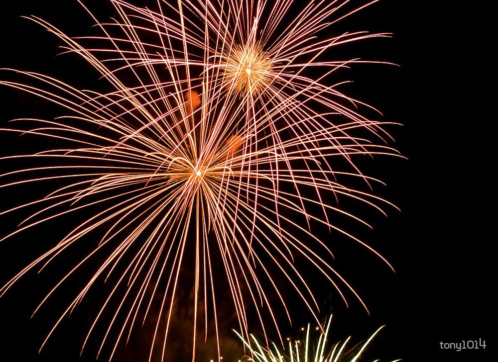 Fireworks by tony1014