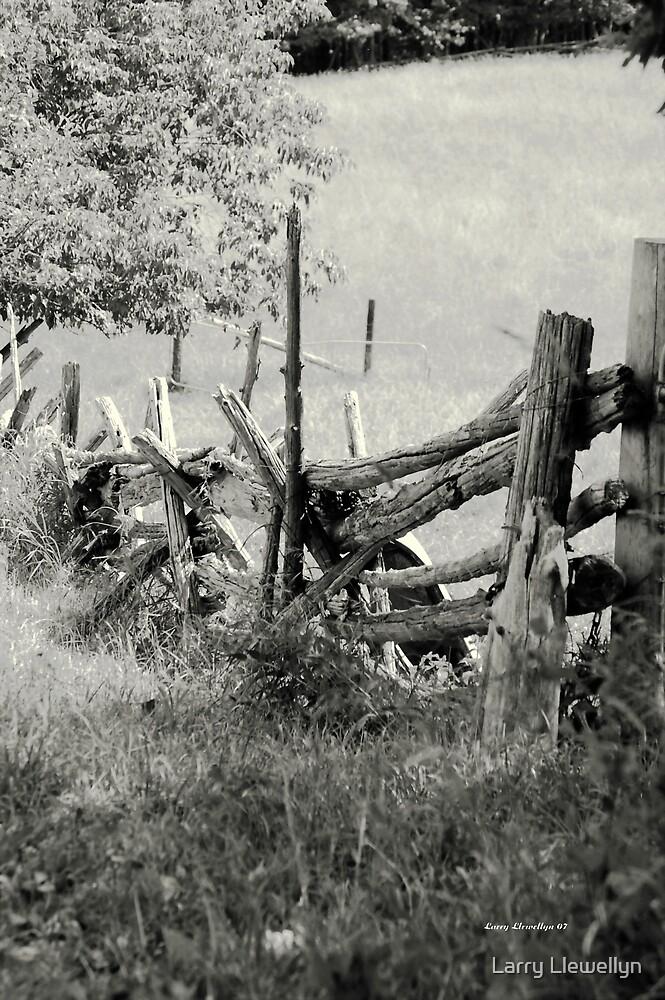 A Meadow in Summer by Larry Llewellyn