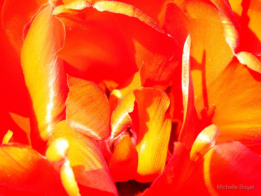 Red Hot  by Michelle Boyer