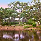 Thorn Park by the Vines -  Clare Valley by Mark Richards