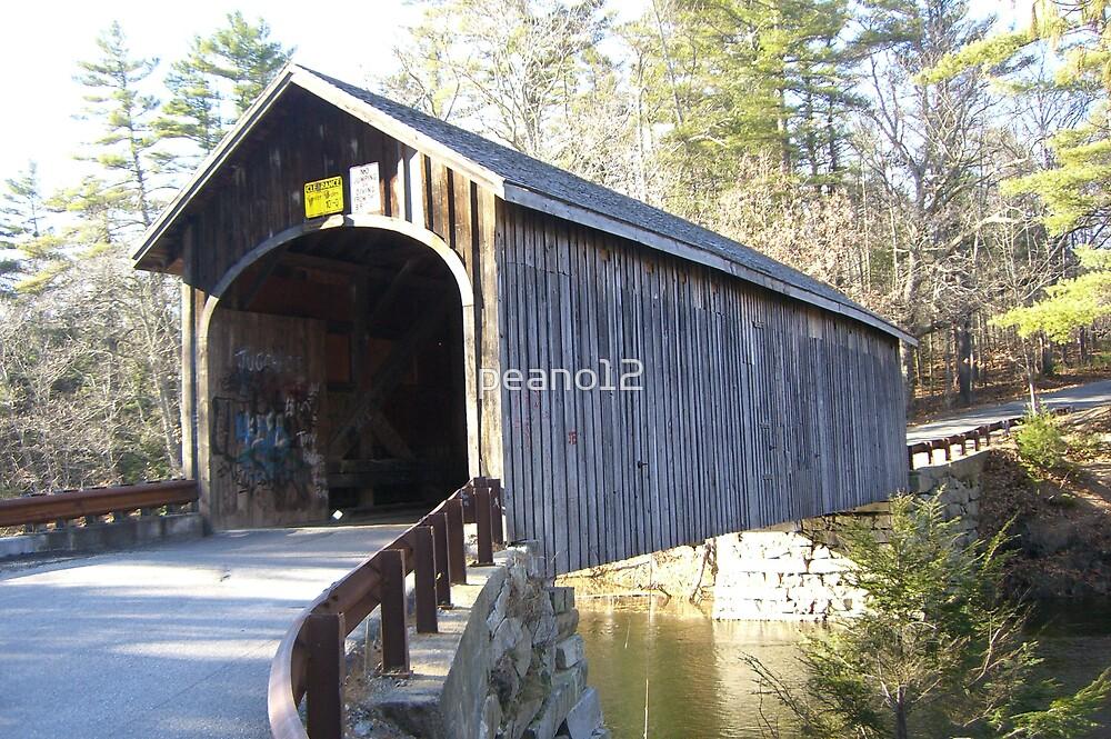 Cover bridge by peano12