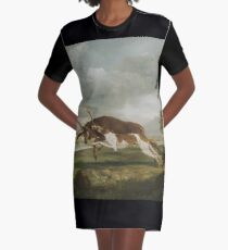 George Stubbs - Hound Coursing A Stag C. 1762 Graphic T-Shirt Dress