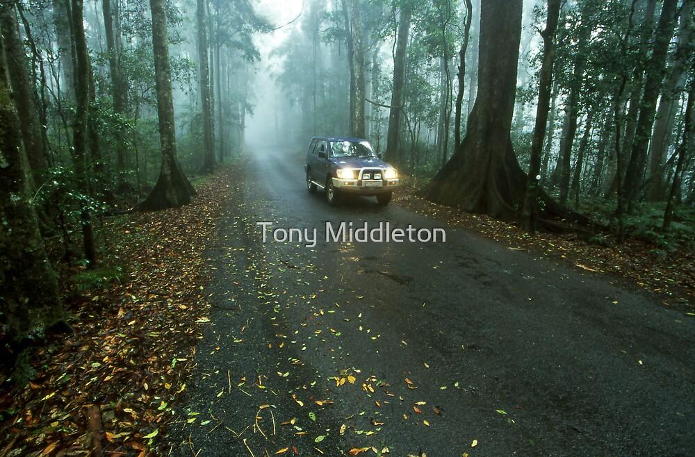 misty mountain drive by Tony Middleton