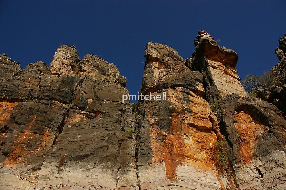 the Cliiffs of Geike Gorge, WA by pmitchell