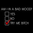 Guess My Mood - Try Me Bitch by truthis