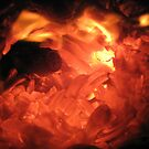 fire log by lindaheldens