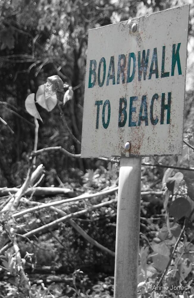 Broadwalk to the beach by Annie Jones