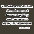Infinite, Albert Einstein  by Tammy Soulliere