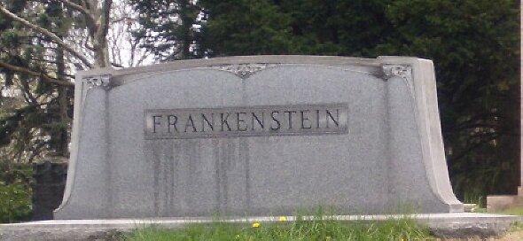 Frankenstein was here by MChris