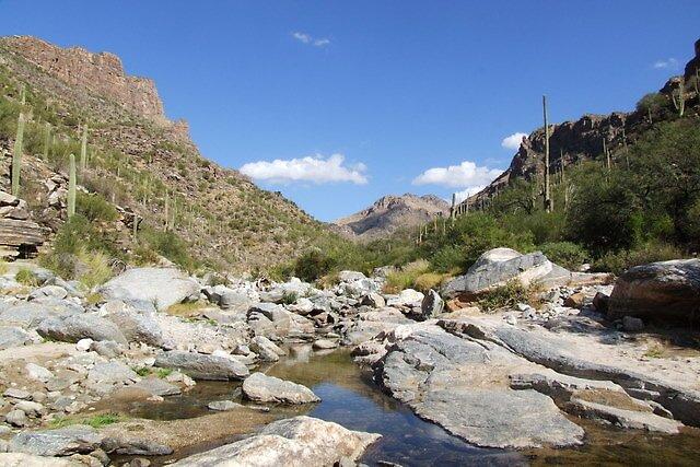 Bear Canyon by azrdwarr2448