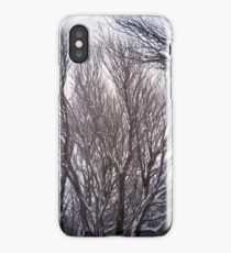 Colorful Winter Willow Trees iPhone Case/Skin
