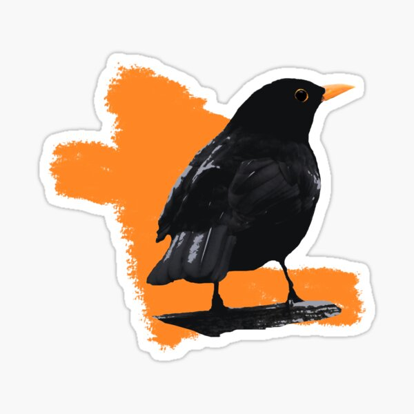 Blackbird fly Sticker