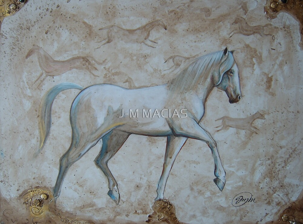 white horse by J-M MACIAS