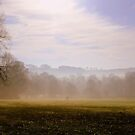 The mist lifts by mikeosbornphoto