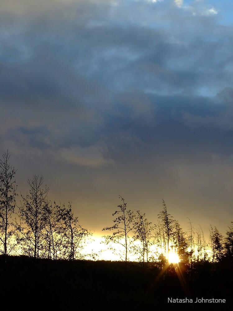 Winter Sunset by Natasha Johnstone