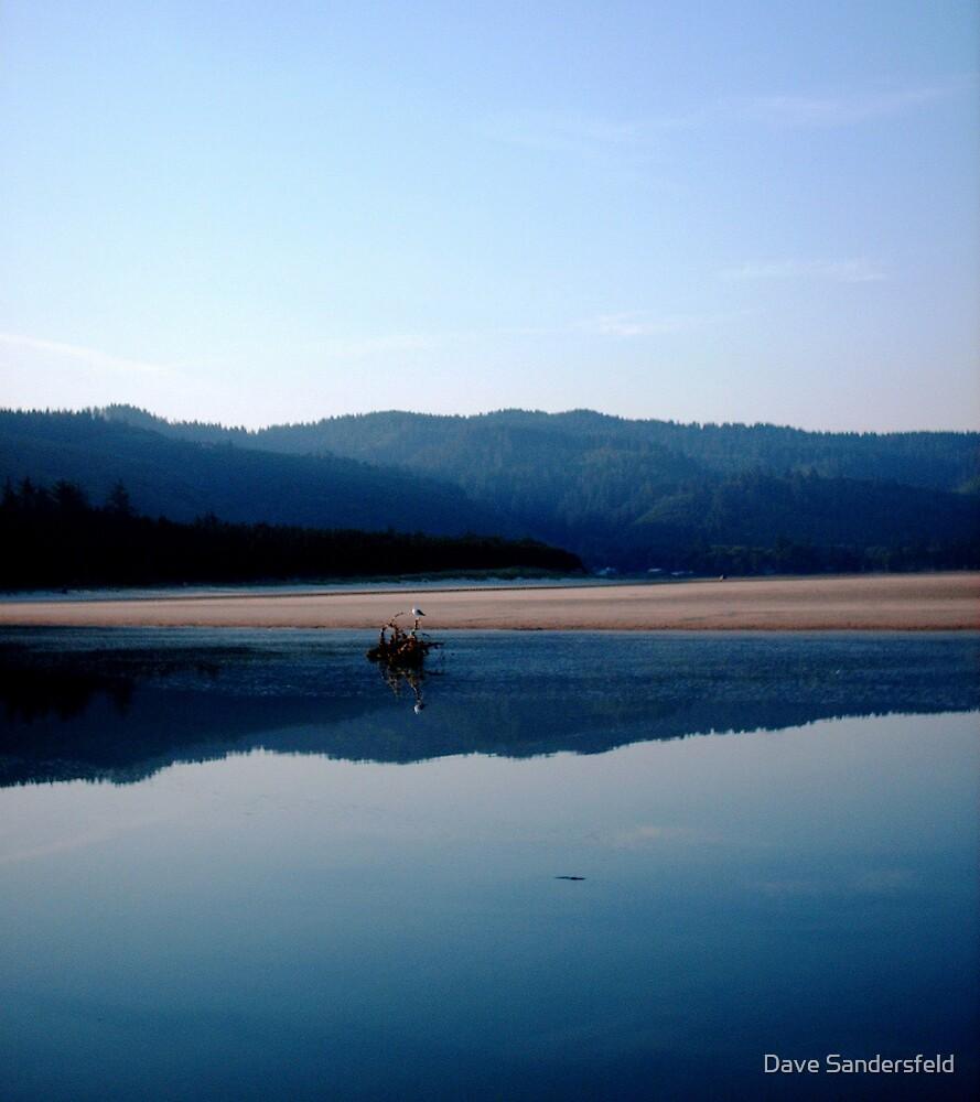 Blue Reflection by Dave Sandersfeld