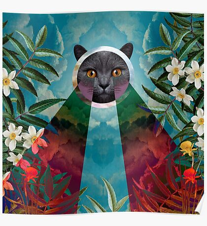 Chartreux Poster