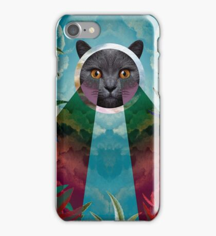 Chartreux iPhone Case/Skin