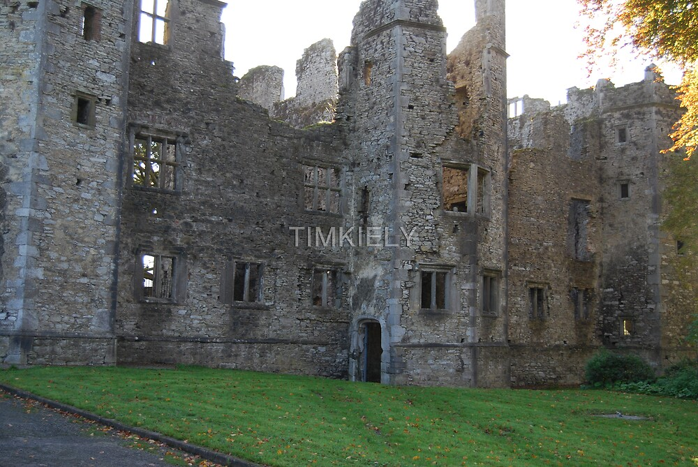 mallow  castle  by TIMKIELY