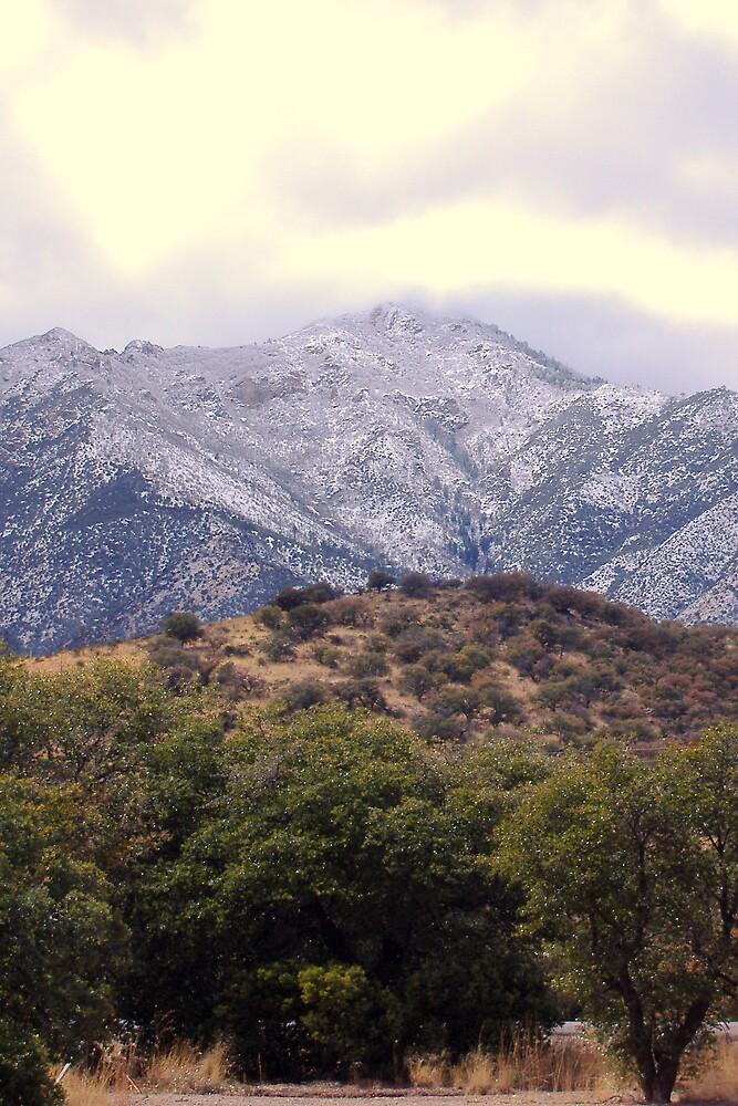 Mountian Snow 3 by azrdwarr2448