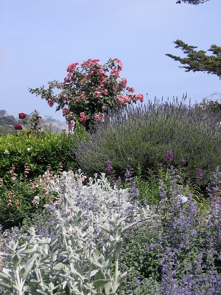 Perennial Garden by The Ocean by Lexi