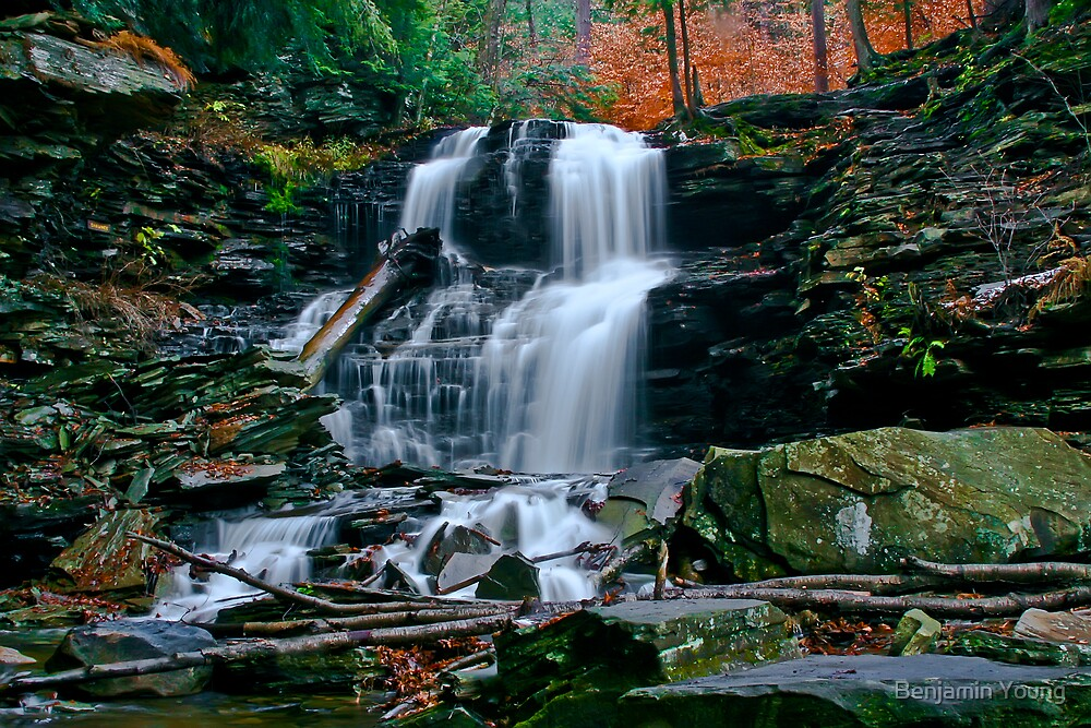 Autumn at Ricketts Glen by Benjamin Young