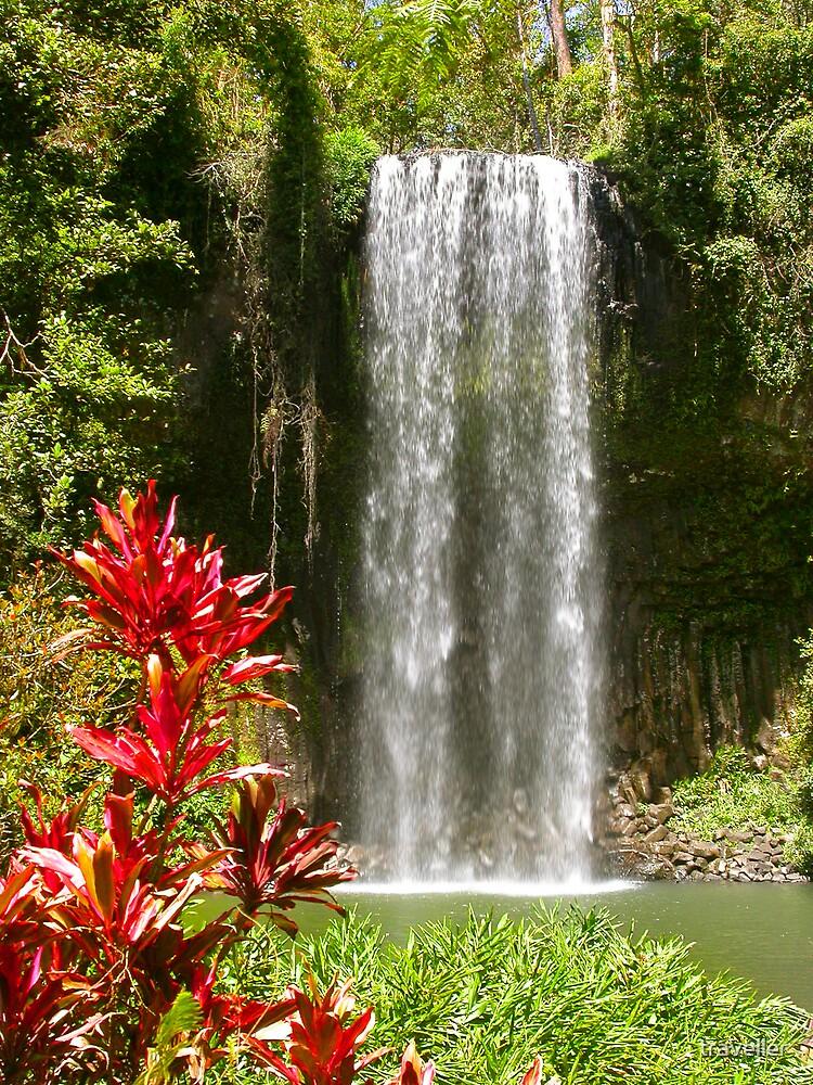 Millaa Millaa Falls by traveller