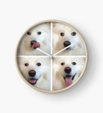 The Four Faces of a Samoyed Clock